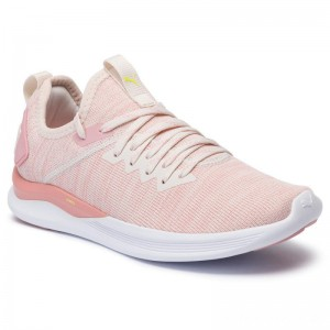 Puma Schuhe Ignite Flash EvoKnit Wn's 190511 18 Pastel Parchment/Bridal Rose