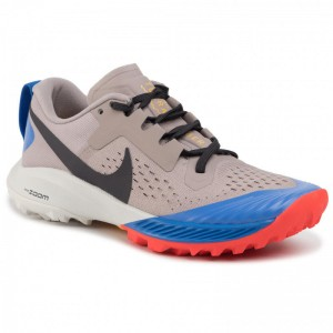 Nike Schuhe Air Zoom Terra Kiger 5 AQ2220 200 Pumice/Oil Grey/Pacific Blue